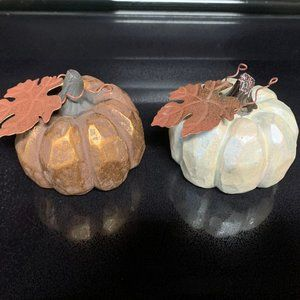 2 Fall/Thanksgiving pumpkins